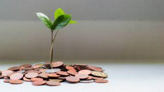 「儲かるなら自分でやればいいじゃない」儲け話を人に教える理由を考える